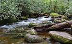 Little Santeetlah Creek