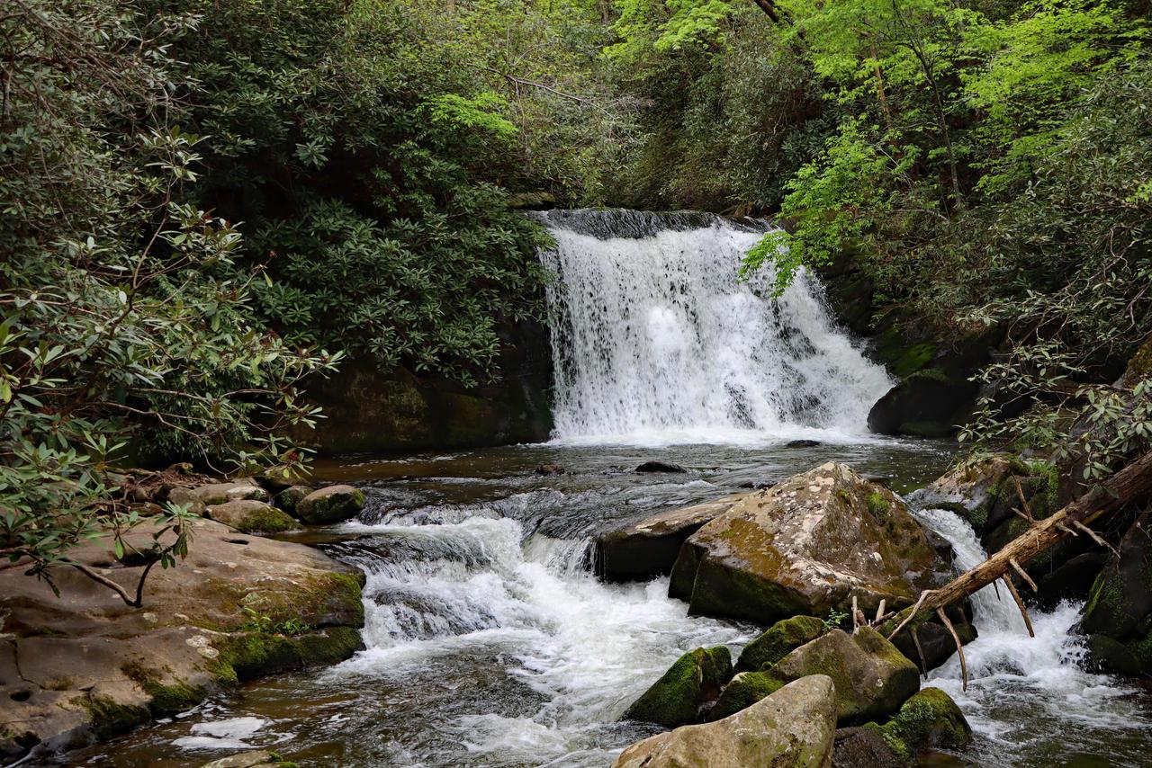 Yellow Creek Falls