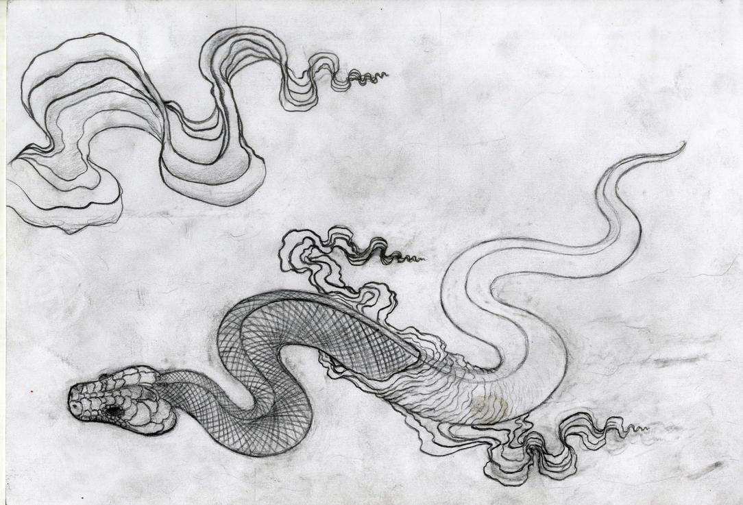 shedding snake by freakempire on deviantart