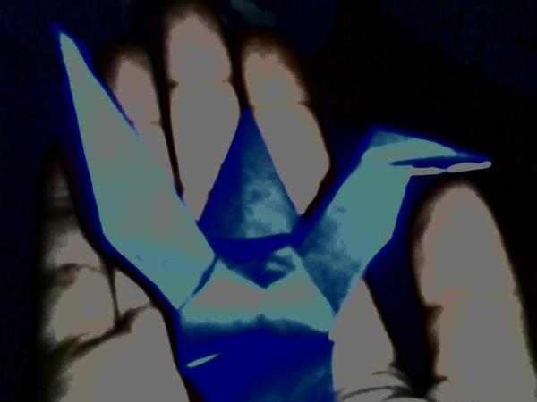 Blue Bird by raffdaime