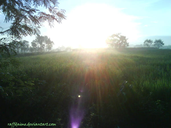 Sunrise by raffdaime