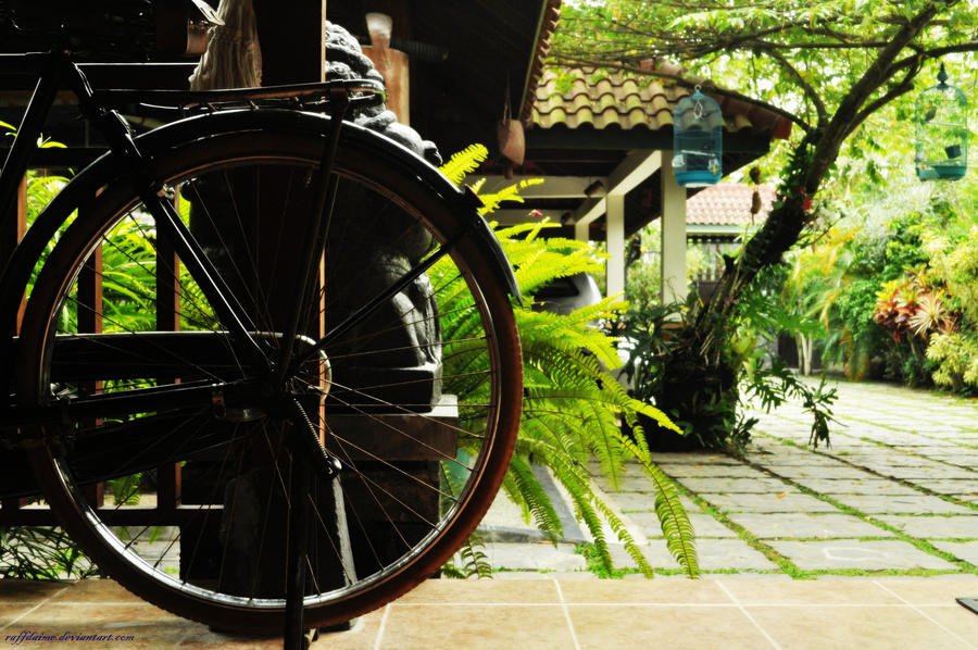 Bicycle by raffdaime
