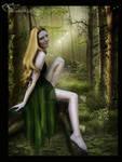 Fairy wood...