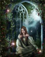 Moonlight Dragonfly's.. by moonchild-ljilja