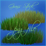 Grass 3d png file