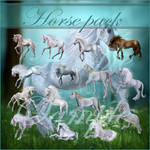 Horse png pack