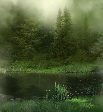Misty Wood background by moonchild-ljilja