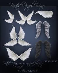 Angel Wings by moonchild-ljilja