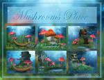 Mushroom Place backgrounds