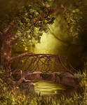 Fairy wood Free background