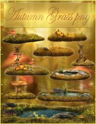 Autumn Grass png NEW!
