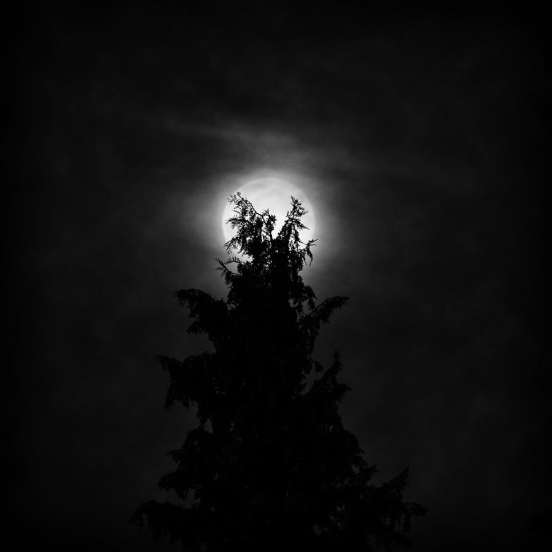 mystic fullmoon night by ArkanumTenebrae
