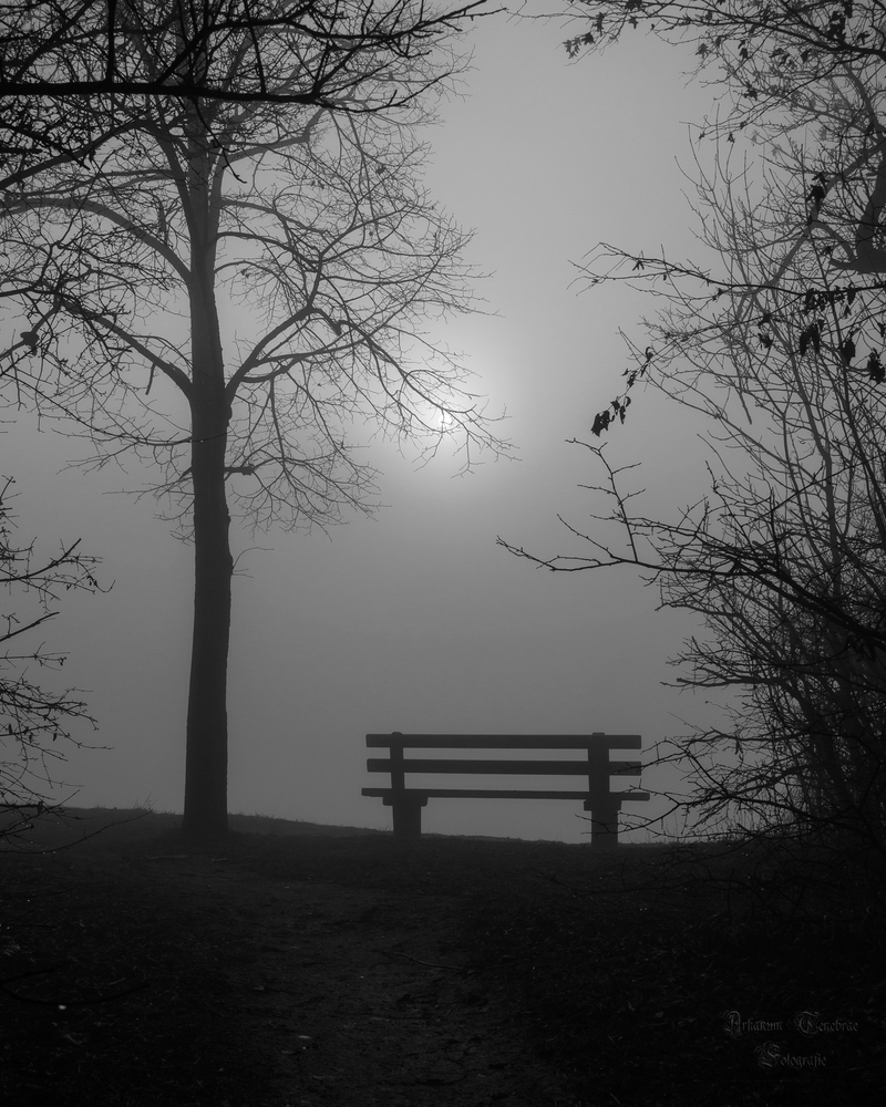 A foggy day by ArkanumTenebrae