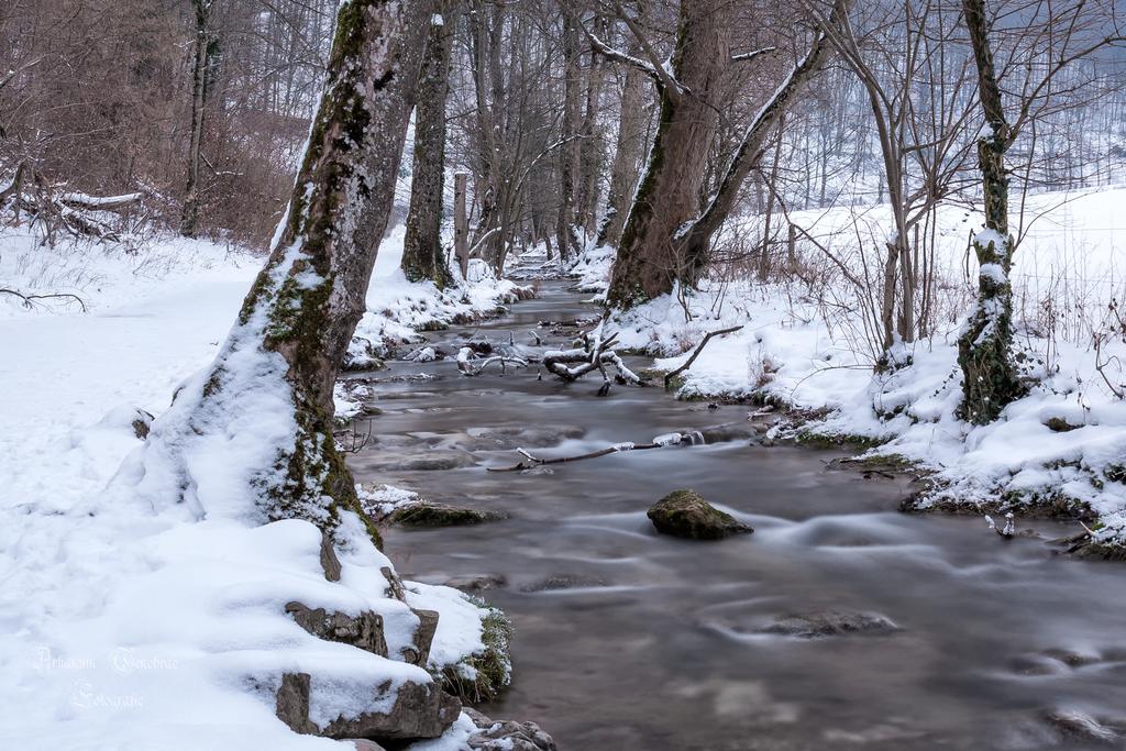 Vinterland by ArkanumTenebrae