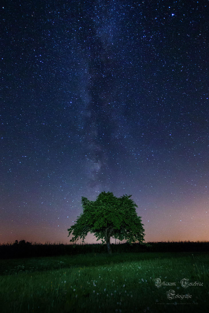 the Milkyway by ArkanumTenebrae
