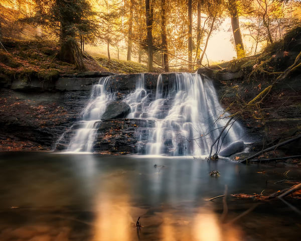 golden autumn by ArkanumTenebrae