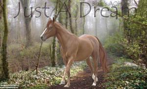 Premade - Just A Dream