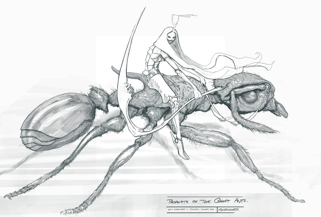 Female Warrior on Ant by m0zch0ps