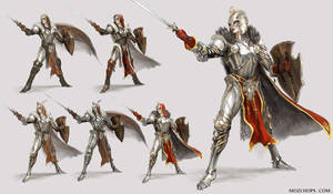 Armour Variations, Heroes Might + Magic