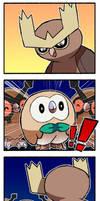 Pokemon - Owls