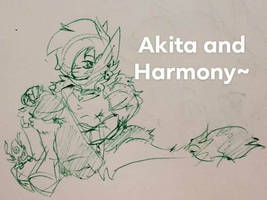 Akita and Harmony doodle