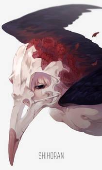 Carnation x Crow