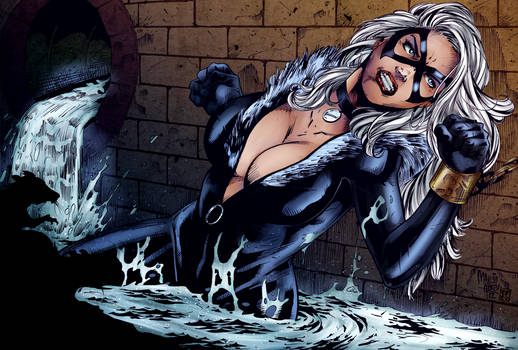 Black Cat (Marcio Abreau by Pendecon) - COLOURS
