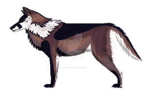 Wolf Abbie Lines By Chickenbusiness  by ChrissyBird