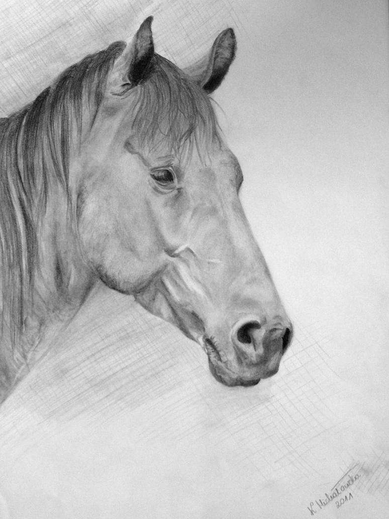 Horse by keat1905