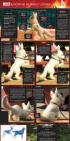 Bolt and how he actually looks (Updated)