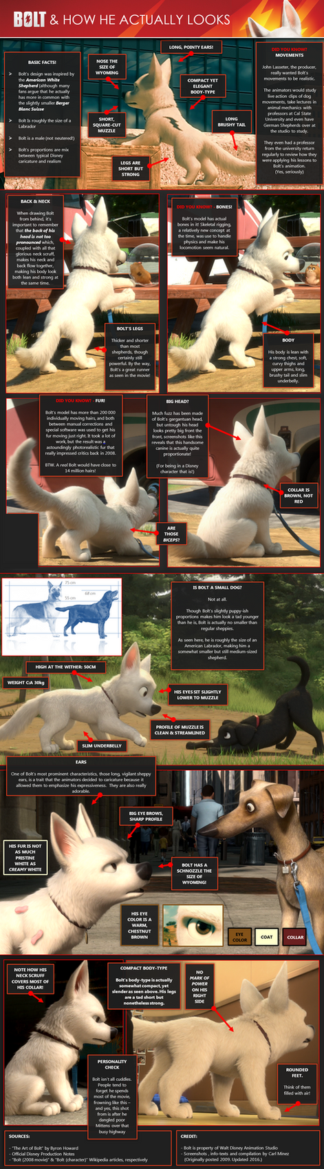 Bolt and how he actually looks (Updated) by CarlMinez