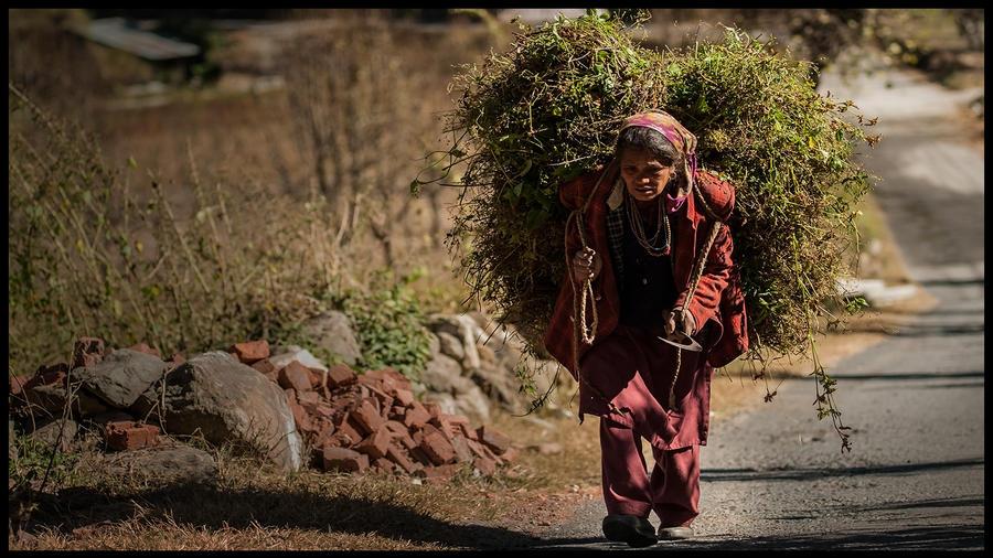 Kashmirian by PasoLibre