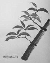 Bamboo (new brush test) by MikePestr