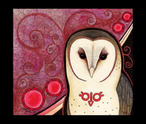 Barn Owl as Totem