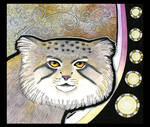 Pallas's Cat as Totem