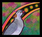 Topknot Pigeon as Totem