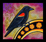 Red Winged Blackbird as Totem