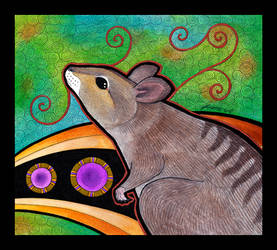 Banded Hare Wallaby as Totem by Ravenari