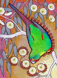 Losing Altitude - Swift Parrot