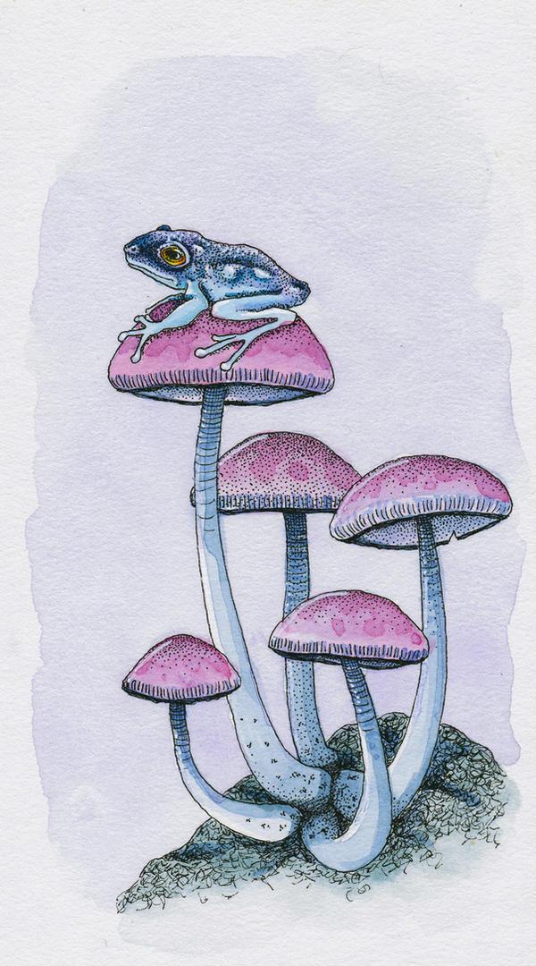 Frog and Mushrooms by Ravenari