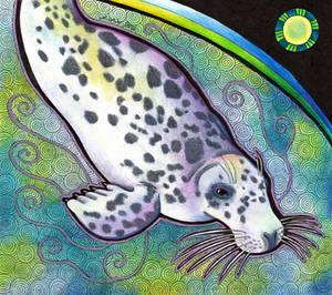 Grey Seal as Totem