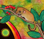 Common Dormouse as Totem