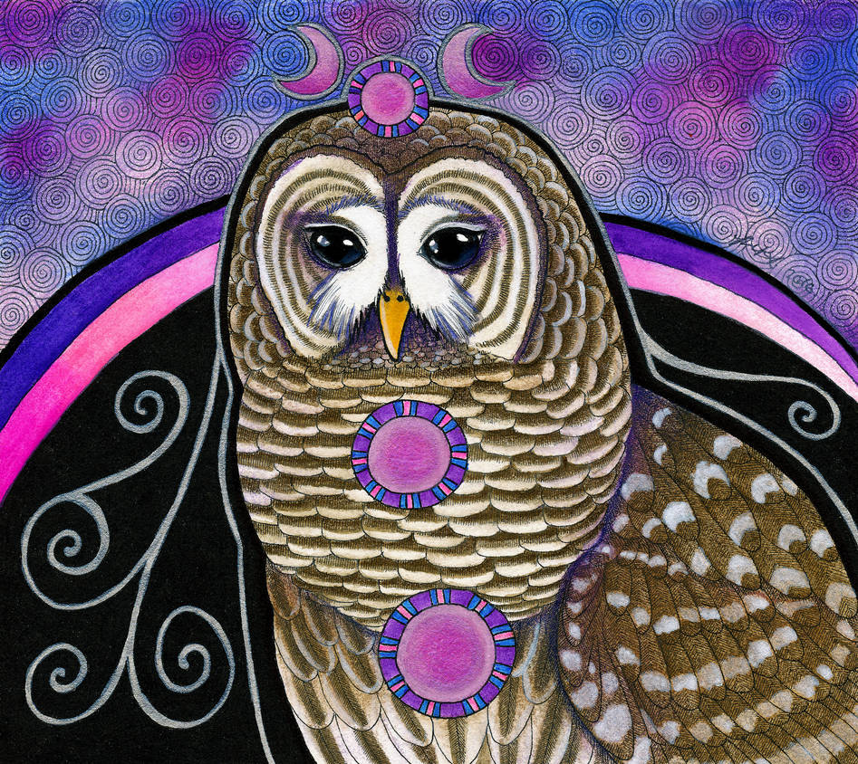 Barred Owl as Totem