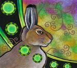 Mountain Hare as Totem