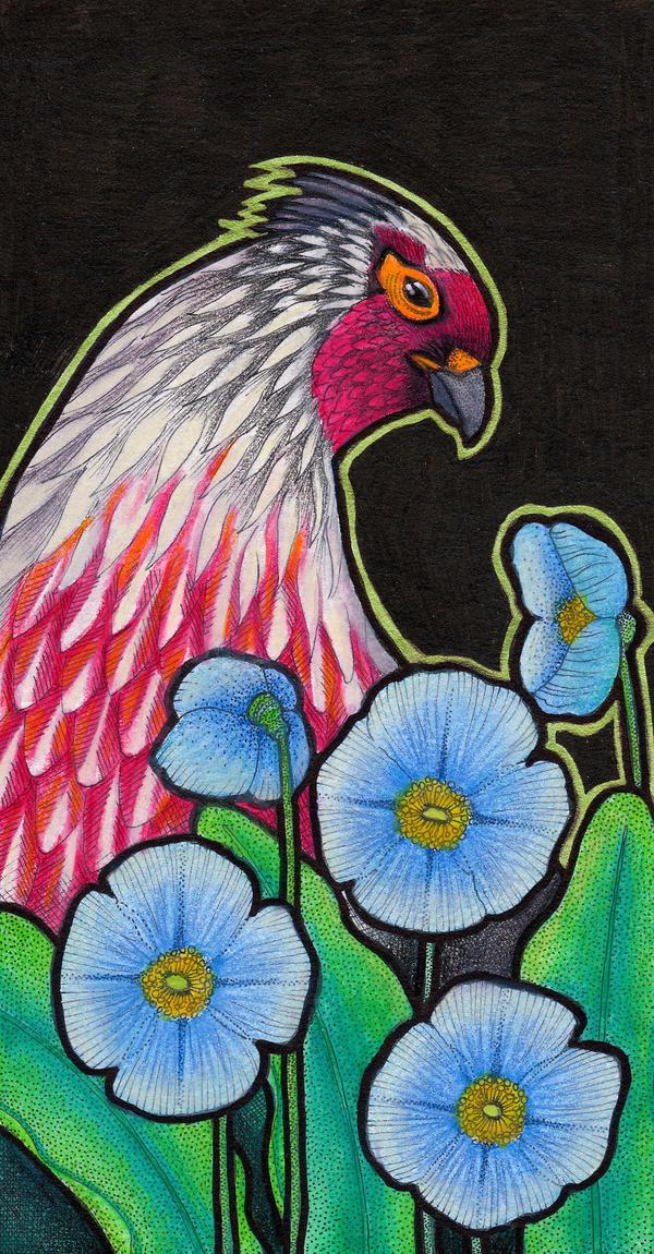 Blood Pheasant and Blue Poppies by Ravenari