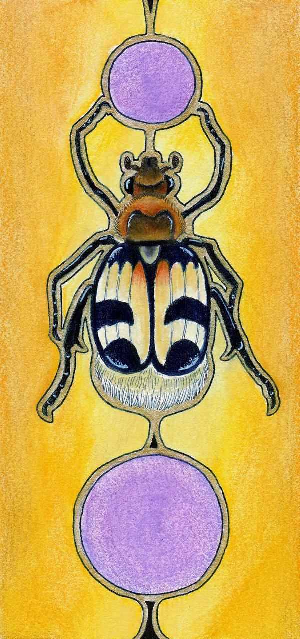 Bee Scarab - Trichius fasciatus by Ravenari