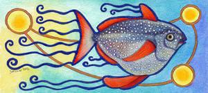 Opah / Moonfish - Lampris guttatus