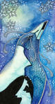 Blue Series - 02 Australian Magpie