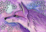 Violet Series - 01. Fox