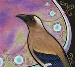 Grey Treepie as Totem